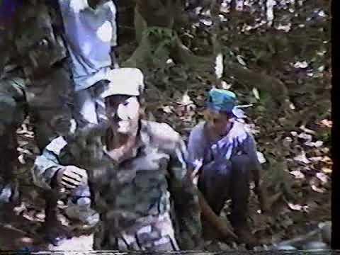 Cuevas las Golondrinas 1996 Moca Puerto Rico