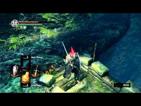 Dark Souls Walkthrough - Everything Possible In... Darkroot Garden ► 8