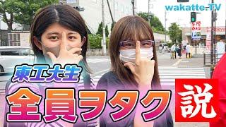 【愛が溢れてる】東工大生全員ヲタク説!【wakatte TV】#576