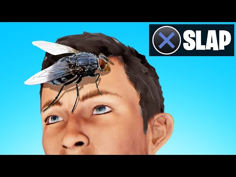 SLAP The FLY On MY FRIENDS FACE! (Funny)