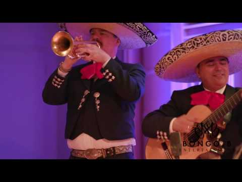 Bongo and B | Mariachi Band - Toronto Weddings, Corporate, or Private Events