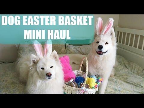 dog-easter-basket-and-mini-haul