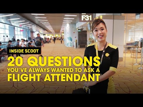 20 Questions You've Always Wanted To Ask A Flight Attendant - Scoot