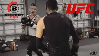 Bellator MMA vs UFC - 15 Year Fued: Michael Chandler vs Michael Johnson