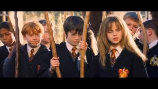 harry potter and the philosopher s stone first flying lesson swedish