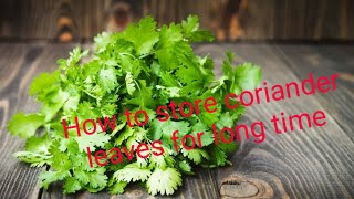 How to store coriąnder leaves for long time| മല്ലിയില മാസങ്ങളോളം കേടു വരാതെ സൂക്ഷിക്കാൻ