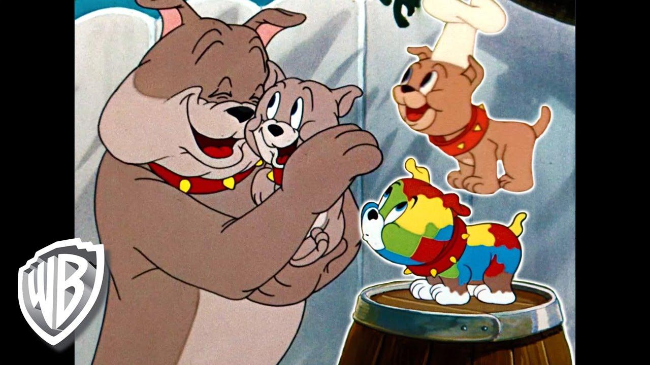Tom y Jerry en Latino | Tyke, el mejor cachorro de todos | WB Kids