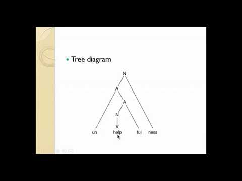 morphology tree diagram shrub graphic symbols series a word and it s structure youtube