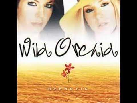 Wild Orchid - Love All In Control