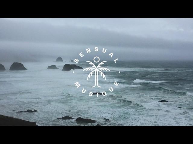 WildVibes & Ericé -  Am I Lost (feat. Fenris) // Lyrics