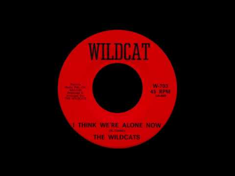 The Wildcats - I Think We're Alone Now...