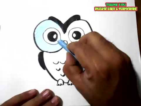 How To Draw An Owl Cartoon Color