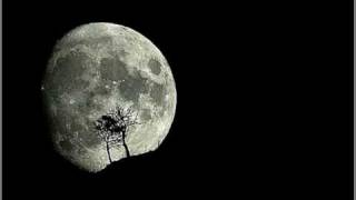 Riblja Corba Tamna je noc