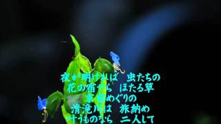 谷龍介さんの『清滝川』を唄ってみました。
