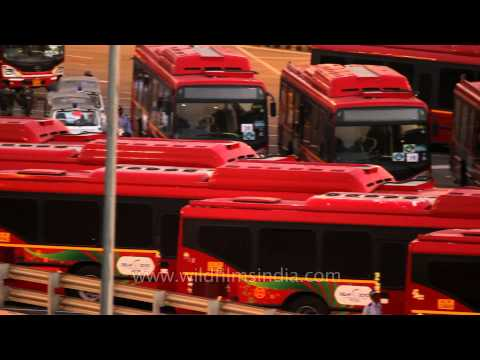 New Delhi receives a new shipment of low-floor CNG buses!