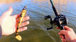 Pike Fishing with the StrikePro Pig Shad wade fishing