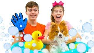 Nastya và Artem tắm cho một con chó con