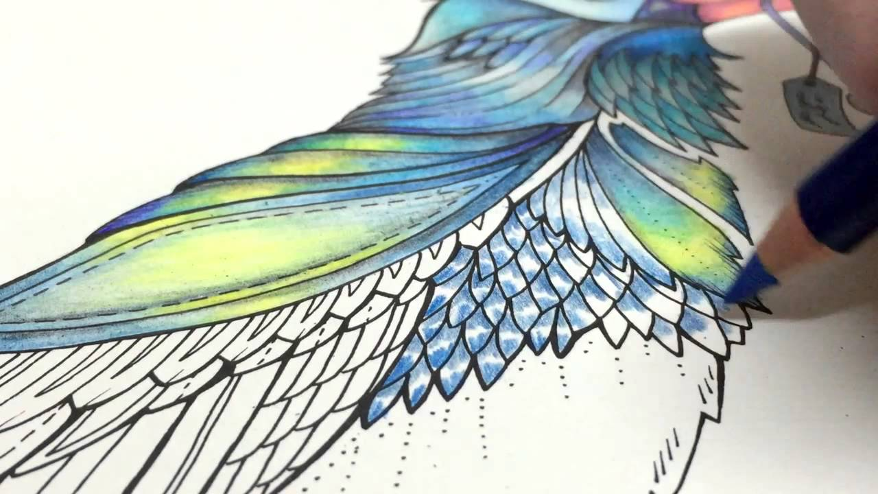 ASMR Adult Coloring Enchanted Forest Blue Bird 8 Blended Pencil Prismacolor Premier