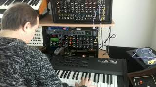 R1 NRSynth goes to old Minimoog model D perfect clone! (Part One)