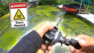 Catching a HUGE Fish out of TOXIC SLUDGE ?!?!