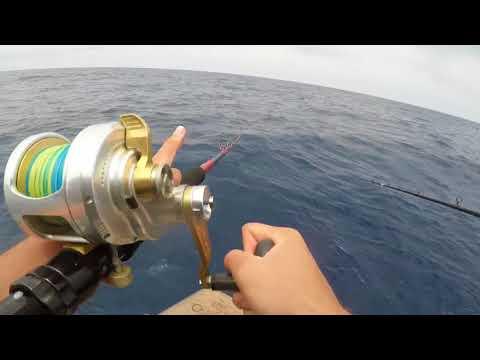 SHOGUN SPORT-FISHING 3 DAY  8/3-6/18