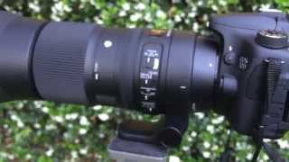 Sigma 150-600mm F5-6.3 DG OS HSM Contemporary Review