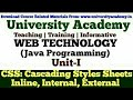 L21:Web Technology,CSS,Cascading Style Sheets,Inline CSS,Internal CSS,External CSS, Hindi University
