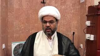 الأدلة على إمامة الإمام محمد الجواد عليه السلام - الأدلة ١٠