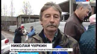 В Кирове идет внеплановая вакцинация домашних животных против бешенства(ГТРК Вятка)