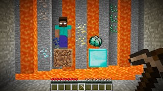 What to Choose? | Herobrine or Diamonds? | Minecraft Compilation