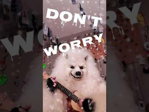 Don't Worry Be Happy Eisbär HoNarroDehom