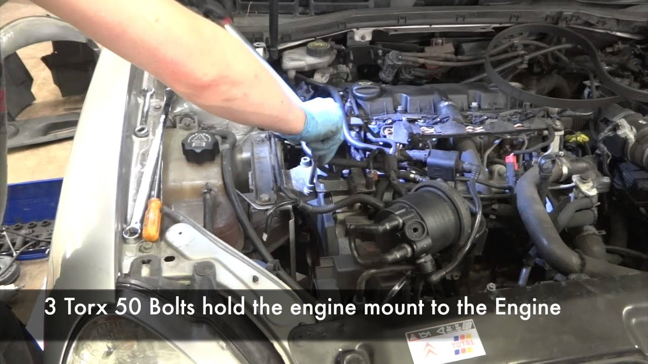 Citroen Xsara 2 0 Hdi Timing Belt Replacement Youtube