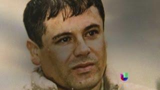 ¿Tiene El Chapo Guzmán un pacto con la DEA para seguir libre? -- Noticiero Univisión