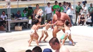 6月26日に土庄町町民プール跡地に設置された土俵で第28回わんぱく...