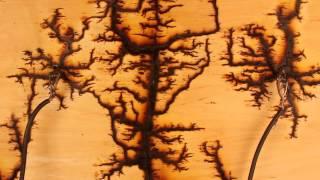 Lichtenberg figure - HIgh voltage wood erosion, 15000volts