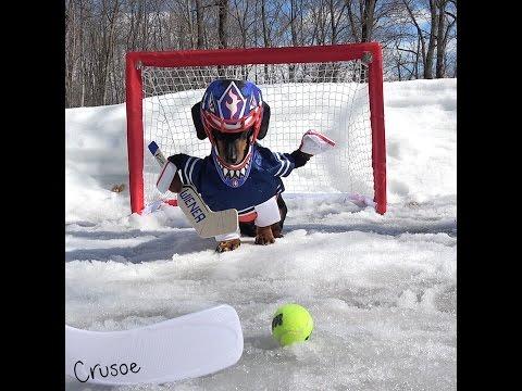 Crusoe Goalie Practice !