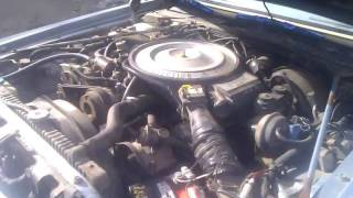 First spring cold start, 1981 Imperial Frank Sinatra Edition. PT 1
