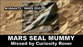 LIFE ON PLANET MARS - SEAL MUMMY / CORPSE ? ArtAlienTV - 1080p