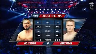 Андрей Афонин - Вацлав Пейсар (Andrey Afonin vs Vaclav Pejsar) | Мир бокса