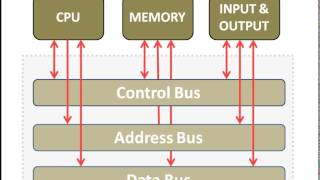 BUS in Computer Architecture