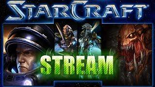 Starcraft Stream : Nuestras fuerzas están siendo atacadas !!!