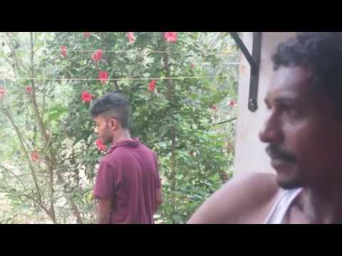 FEATHER | Malayalam Short Film | My.R PRODUCTIONS