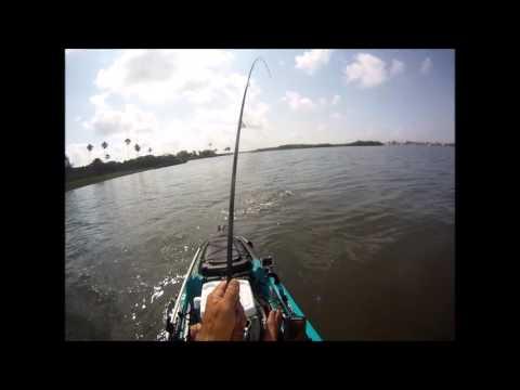 Millennium Park Kayak Fishing