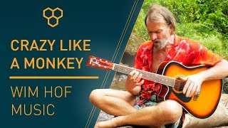 Wim Hof Music : Crazy Like A Monkey Song