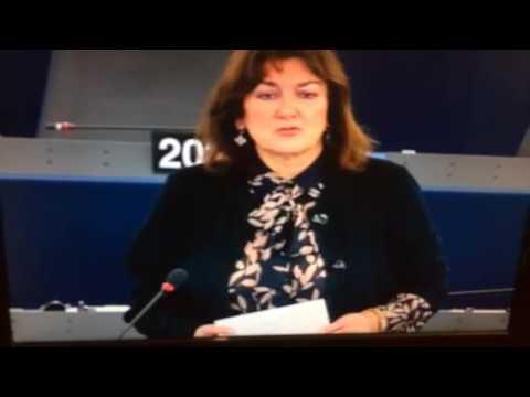 Zwischenbericht aus Brüssel (12)