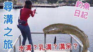 【釣魚日記】桃園尋溝之旅  釣呆小技巧分享  帶你吃好釣好.........  雷釣り Snakehead Fishing |采蓁 Patti