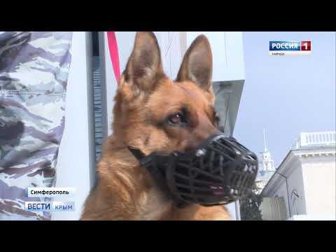 Вестикрым.рф/ В России отмечают День транспортной полиции