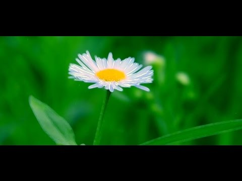 03 Prabhu se mila hindi Song..|| Hindi Video Song || Brahma Kumaris