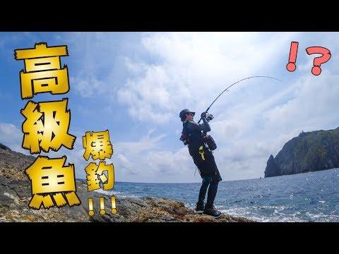 穴場だらけの無人島で釣りしたら謎の高級魚が爆釣でお祭り騒ぎwww草垣群島編