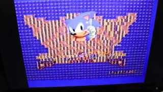 Sonic the Hedgehog Glitching on Western Technologies Sega Dev Card
